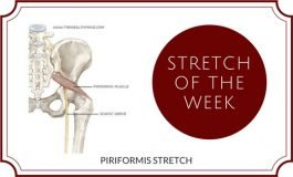 STRETCH OF THE WEEK - PIRIFORMIS
